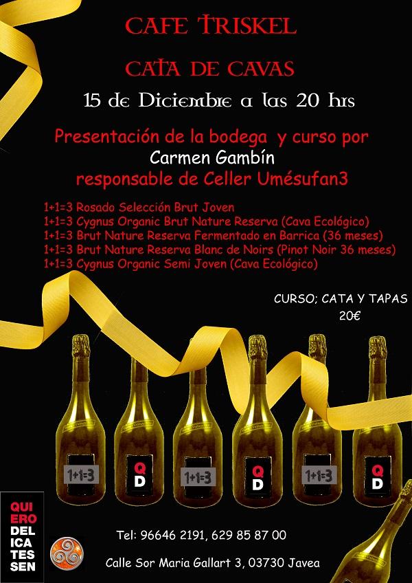 cata-de-cava-15dec2016-copy-600×400